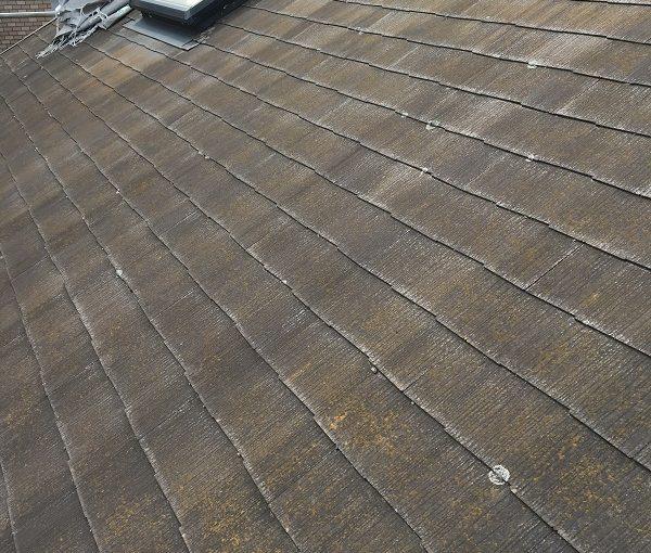 千葉県勝浦市 屋根塗装 天窓補修 雨漏り 現場調査