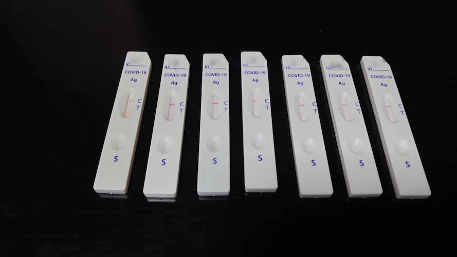 抗体検査の結果の画像